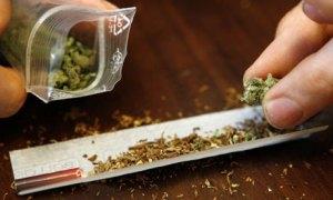 cannabis_2[1]